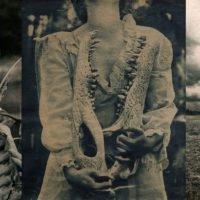Jaime Erin Johnson – A Delicate Art