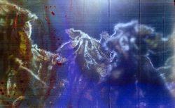 Brigette Bloom – DNA on Film